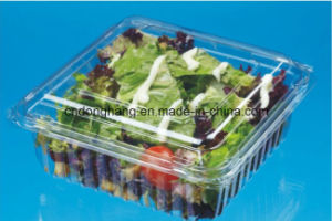 PS Food Container Forming Machine (DHBGJ-350L) pictures & photos