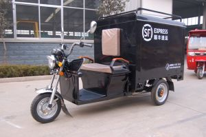 Express 3 Wheel Tricycle Electric Tricycle pictures & photos