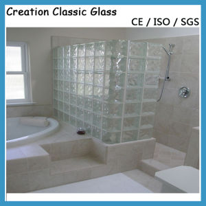 Glass Brick/ Glass Block/ Hollow Glass with Cartons Packing pictures & photos