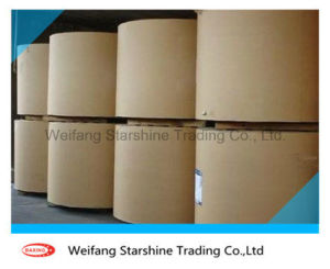 Virgin Pulp PE Coated Paper in Roll pictures & photos