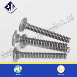 Carriage Bolt with Material Ss304 pictures & photos