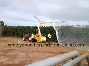 Plastic Orchard Anti Hail Net Agricultural Apple Tree Anti Hail Net Made in China pictures & photos