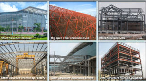 Professional Supplier Steel Structure Workshop (SSW-013) pictures & photos