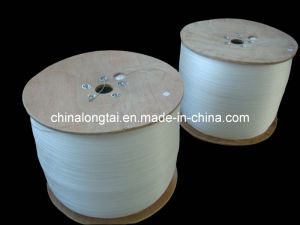 60000d Raw White Polypropylen Twisted /Untwisted Filler Yarn (RoHS) pictures & photos