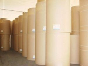 PE Coated Kraft Paper for Luch Box Making pictures & photos