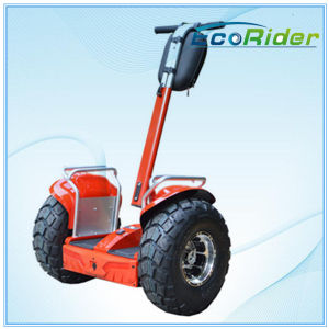 2016 Newest 2 Wheel Balancing Scooter Ecorider Standing up Electric Scooter pictures & photos