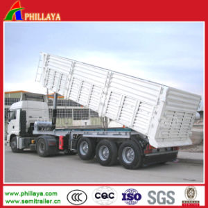 The Cargo Trailer Hydraulic Dump Truck Semi Box Trailer pictures & photos