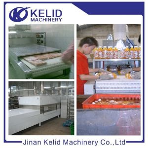 New Type Arrival Microwave Vacuum Drying Machine pictures & photos