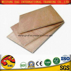 China Manufacture of Plywood/Okoume/Bintangor Plywood pictures & photos
