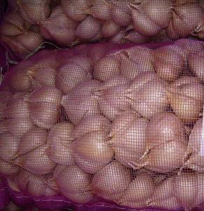 Exported Standard Fresh White Garlic pictures & photos