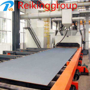 Steel Plate Screw Conveyor Type Shot Blasting Machine pictures & photos