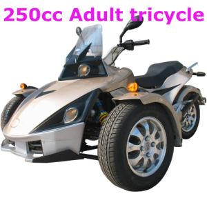 New 250CC Trike (FPA250-1)