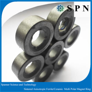 Permanent Magnet Ferrite Multipole Rings for Stepping Motors pictures & photos