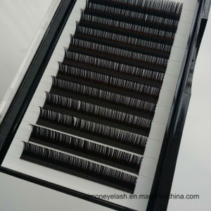 Silk Mink Eyelashes Extensions False Individual Cosmetics Lashes pictures & photos