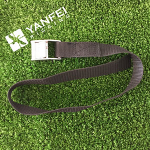 25mm/500kg Cam Buckle Strap, Cam Buckle Tie Down pictures & photos