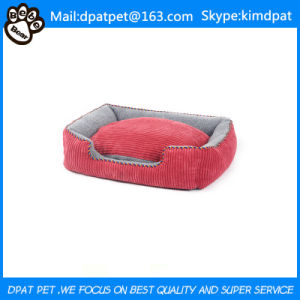 Factory Supply House Dog pictures & photos