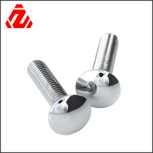 Custom Stainless Steel Round Head Bolt pictures & photos