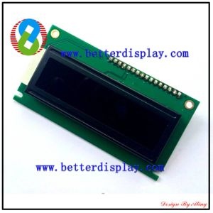 LCM LCD Panel LCD Display Va Monitor Customized Va LCD Screen pictures & photos