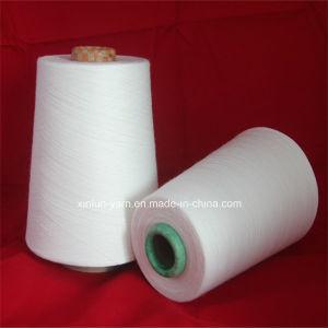 Ne 40/1 100% Viscose Compact Siro Slub Yarn for Knitting pictures & photos
