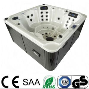 Balboa SPA TV Hydro Hot Tub Freestanding Massage SPA pictures & photos