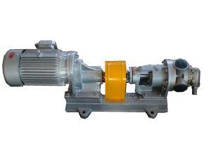 Nyp High Viscosity Bitumen Heat Insulating Rotor Pump pictures & photos