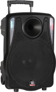12 Inch Rechageable Electronic Wireless Speaker PS-5212bt-Iwb pictures & photos