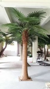 High Quality Artificial Plants of Big Bamboo Palm Gu-Bj-205-32b pictures & photos
