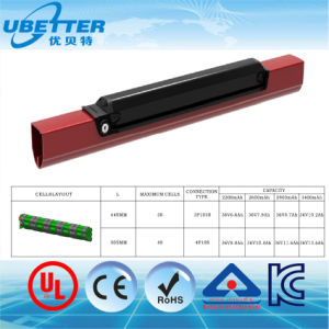 24V 36V 48V Electric Bicycle Bike Scooter Li Ion Battery Lithium Ion Battery pictures & photos