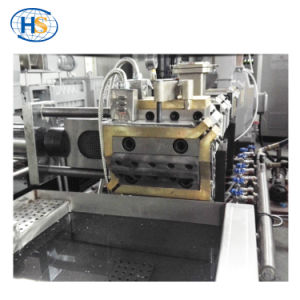 Haisi Extrusion Plastic Granulator Machine Twin Screw Extruder pictures & photos