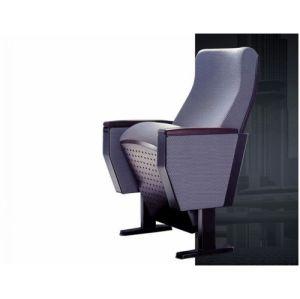 Auditorium Seating/Auditorium Seat/Hall Chair (BS-824)