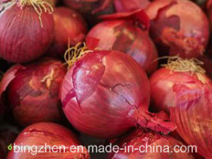 5.0cm up 2017 New Crop Fresh Red Onion pictures & photos