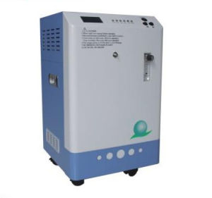 Water Treatment Ozone Generator for Fishpond pictures & photos