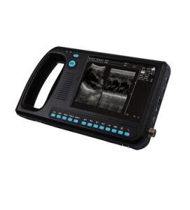 Animal Veterinary Ultrasound Black Doppler Laptop Handheld Doppler pictures & photos