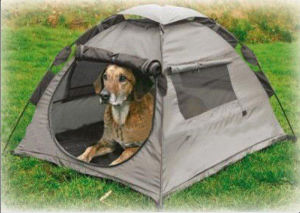 Cat Dog Mini House Pet Tent pictures & photos