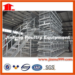 H Style Poultry Equipment for Chicken Farm Feed pictures & photos