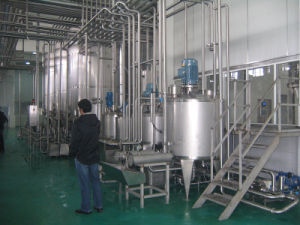Full Automatic 5000L/H Ice Cream Processing Line pictures & photos