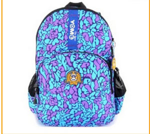 Teenage Girl High School Backpack Bags pictures & photos