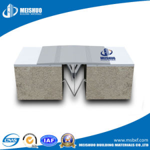 Wall Expansion Joint with Ss Spring (MSNHJ) pictures & photos