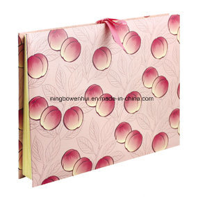 High Quality Expanding Paper File Folder for Promotion pictures & photos