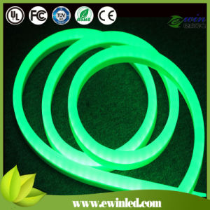 Green LED Neon Flex for Christmas Decoration pictures & photos