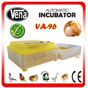 2014 Newest Style Best Selling Simple Operation Holding 96 Chicken Eggs Used Poultry Incubator for Sale pictures & photos