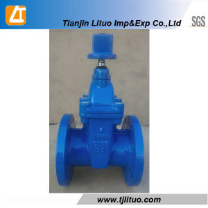 DIN Standard Non Rising Stem Ductile Iron Gate Valve pictures & photos