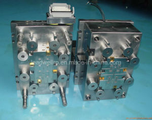 Hot Runner Plastic Injection Mould / Mold (LW-01009) pictures & photos