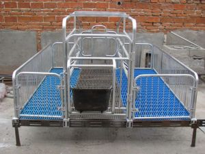 HDG Farrowing Crate with Welded Steel Frame pictures & photos