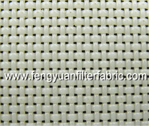 Polyester Plain Weave Mesh (paper making screen) pictures & photos