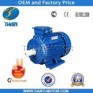 Y2 Three Phase AC Heavy Duty Electric Motor for Selling pictures & photos