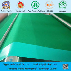 Kintop PVC Waterproof Membrane of Exporting to Canada pictures & photos