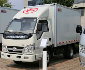 Foton 4*2 Van Cargo Truck pictures & photos