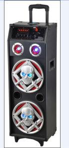 2013 New Design Portable Rechargeable Speaker Ailiang (USBFM-AJ210K)