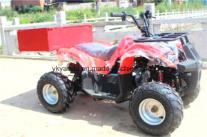4X4wd ATV, 300cc ATV with EPA/EEC/Ce pictures & photos